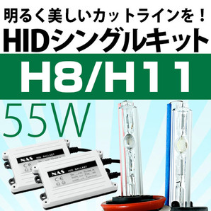 HIDシングルキット 12V 55W H8/H11
